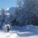 neige - Edelweiss Ancelle